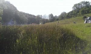 camping streamcombe farm