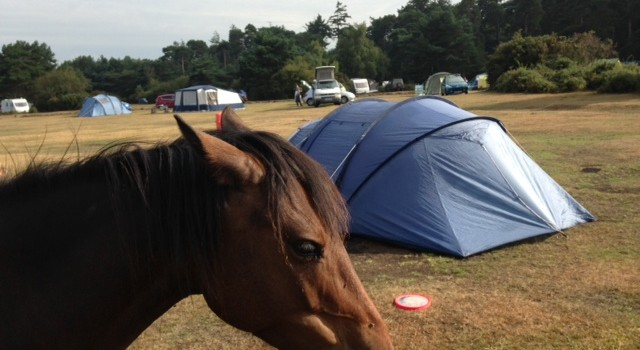 Camping at Roundhill