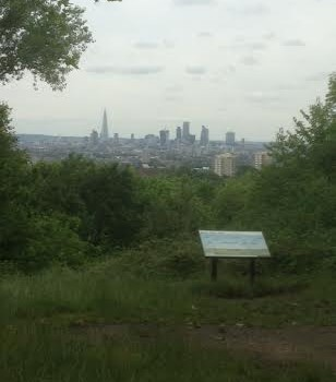 One Tree Hill: a natural vantage point for London's skyline