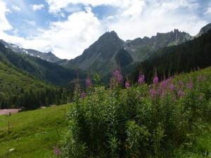 Tour de Mont Blanc4