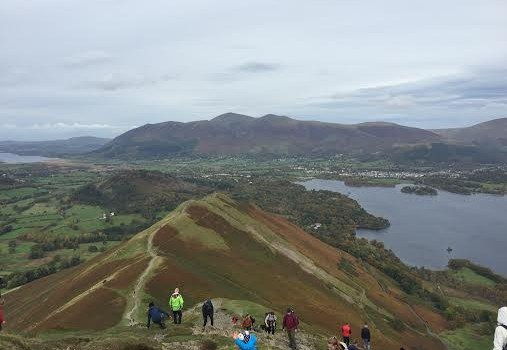 Catbells'  popularity is about to go intergalactic…
