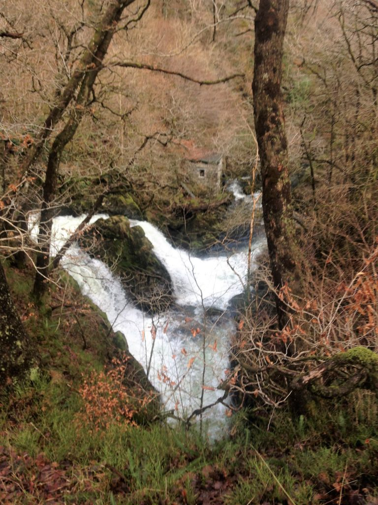 5. Colwith Force