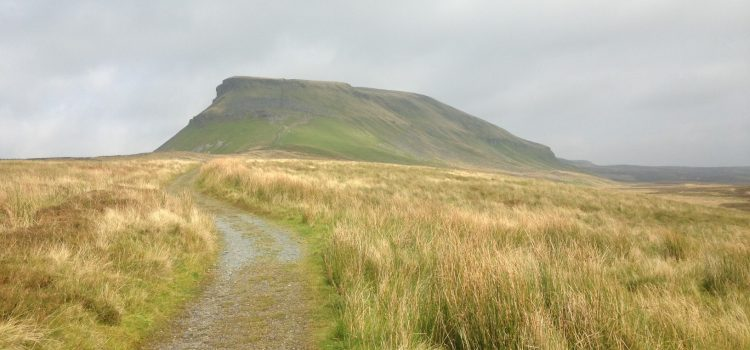 Circular walk from from Horton-in-Ribblesdale to Pen Y Ghent and Plover Hill
