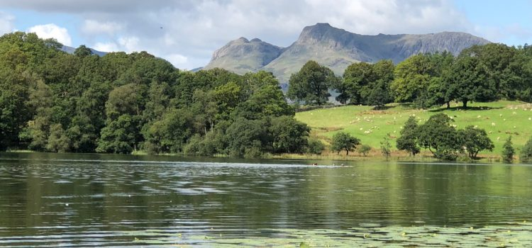 A day out at Loughrigg and Skelwith Bridge